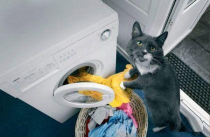 Washing Machine Cost